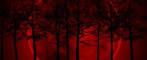 bloodredmoon