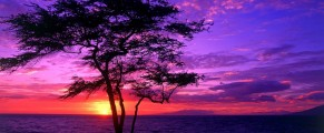 sunrise#7