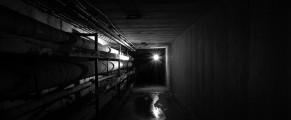 asylum#12
