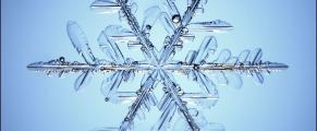 snowflake#7