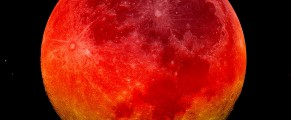 Bloodmoon#2