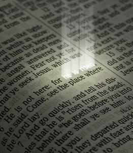Biblelight#1