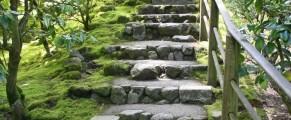 japanesegarden#9