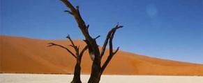 namibia#5