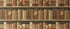 bookshelf#1