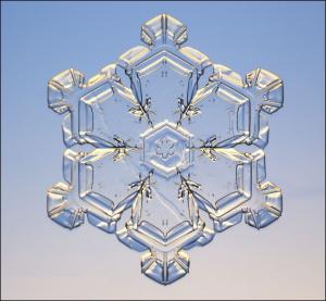 snowflake#9