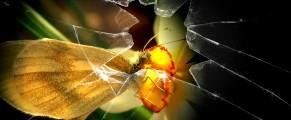 brokenglass#1