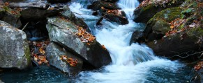 flowingwaters#3