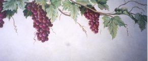 grapevine3
