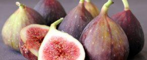 figs#1