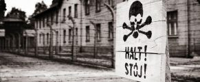 Auschwitz#3
