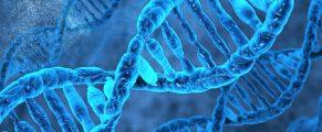 DNA#2genetics