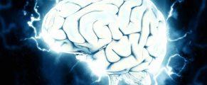 brain#1