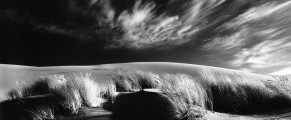 Eel Creek Sand Dunes