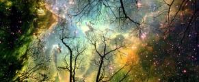cosmos#1