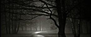 darkness#1