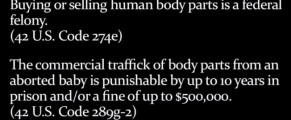 selling-body-parts-law-quotes