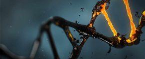 DNA#1