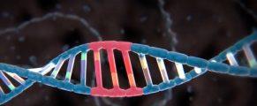 DNA#3