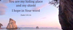 Psalm119#2