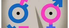 genderlies