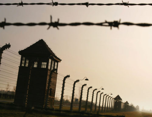 What Americans Know About the Holocaust: January 27th International Holocaust Remembrance Day