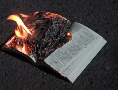 Black Lives Matter Protesters Burn Bibles in Bonfire Outside Portland Courthouse: Video