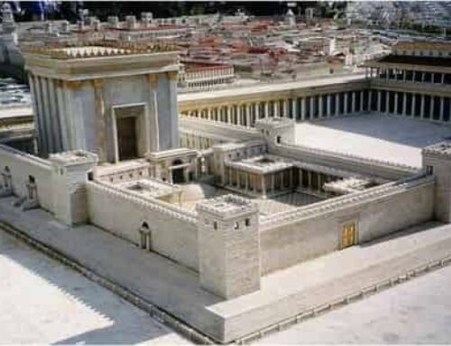 NEW SCHOOL IN JUDEAN HILLS TRAINS PRIESTS FOR THIRD TEMPLE